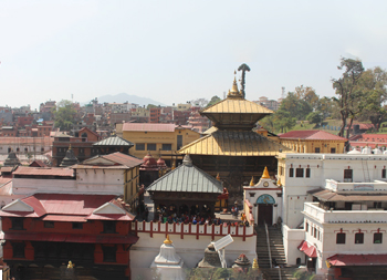 Protected: Pashupatinath:Lord of all beings